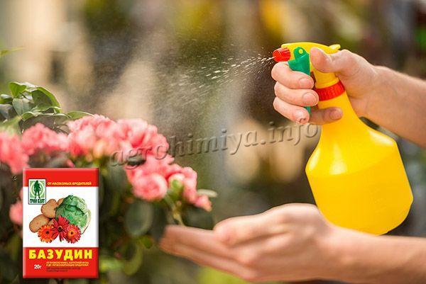 Чтобы избавить комнатные цветы от вредителей Базудин отлично подойдет