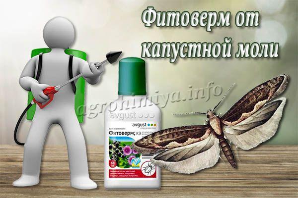 Фитоверм от капустной моли