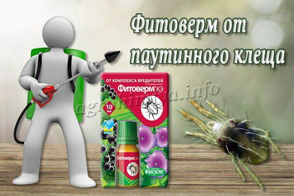 Фитоверм от паутинного клеща