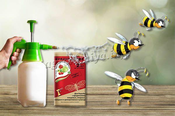 Фуфанон очень опасен для пчел