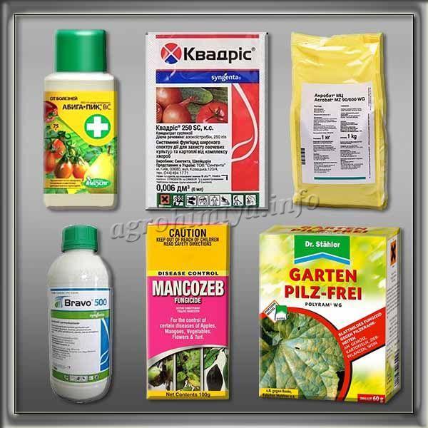 Химические препараты от Кладоспориоза