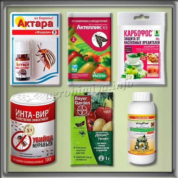 Инсектициды против Трипсов