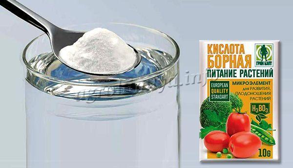 Как развести борную кислоту для помидоров