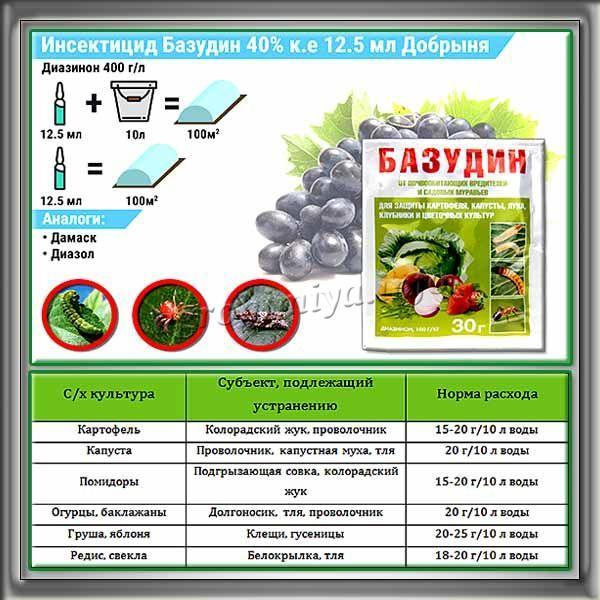 Описание препарата Базудин