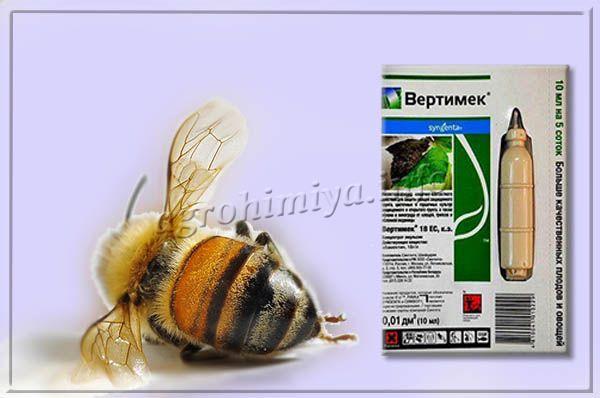 Вертимек относится к 1 классу опасности для пчел