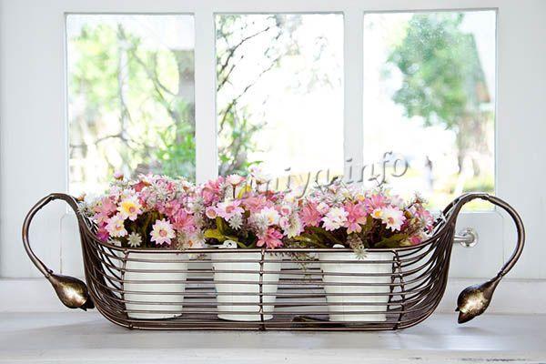 Если нужно поставить растение на подоконник, стоит выбирать северо-западное окно
