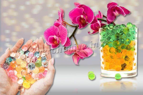 Гидрогель или аквагрунт – один из вариантов выращивания цветов без почвы
