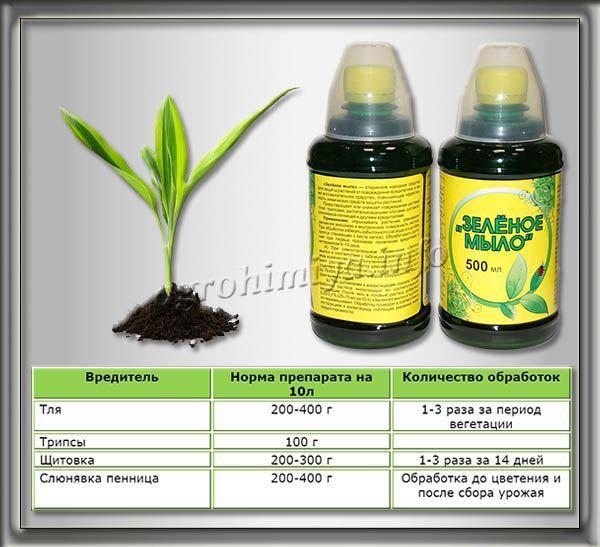 Инструкция по применению Зеленого мыла
