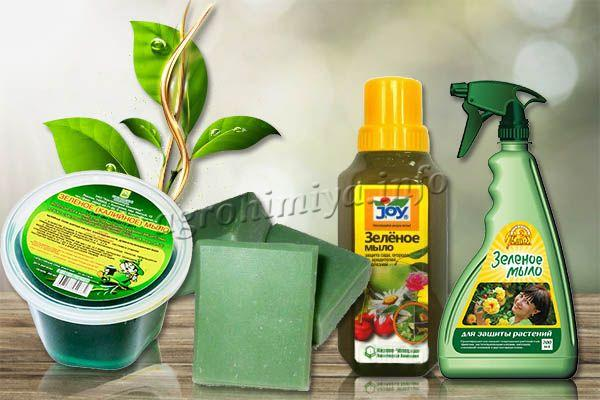 Зеленое мыло – это безвредное вещество биологического типа для защиты растений от вредителей
