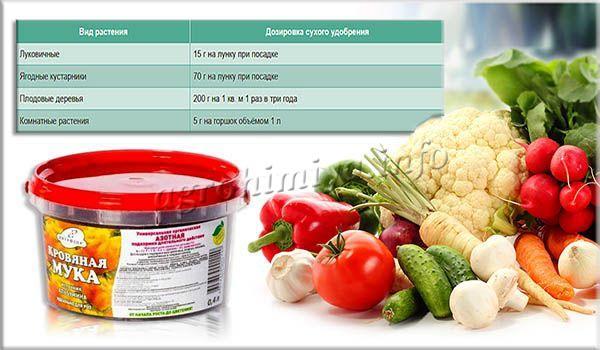 Дозировка подкормки из сухой кровяной муки для растений