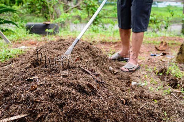 Если торф засохнет, размочить его будет непросто, так что лучше сразу заделать торф в почву
