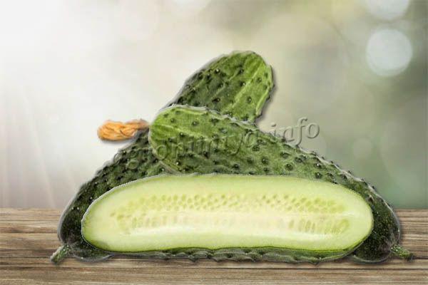Мякоть светло-зеленая, плотная, без пустот, с обилием мелких семян, которые практически не ощущаются во время еды