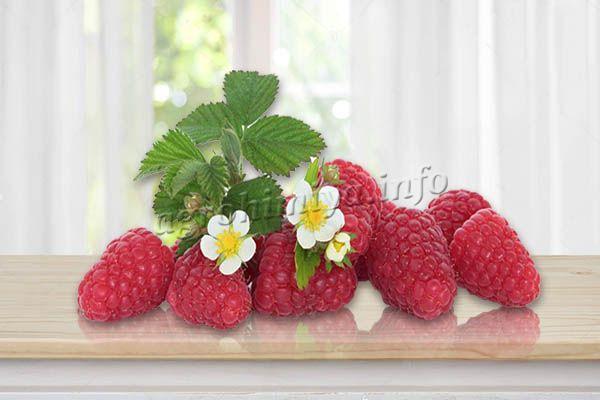Цветы большие, белого цвета, в диаметре достигают 1,5 см, ягоды крупные