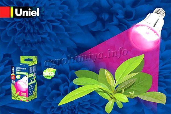 Фитолампа Uniel LED-A60-9W-SP-E27-CL ALM01WH