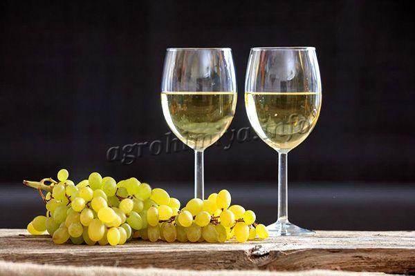 Благодаря насыщенному вкусу и аромату, обилию сахаров в составе, из винограда Лора получается непревзойденное вино