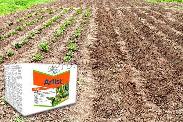 Чтобы обработать посадки, необходимо опрыскать плантацию еще до появления всходов картофеля