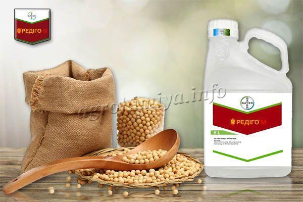 Для защиты сои от комплексных корневых гнилей, пероноспороза, антракноза, аскохитоза, плесени, проводится обработка по норме 0,8-1 л на 1 т семян