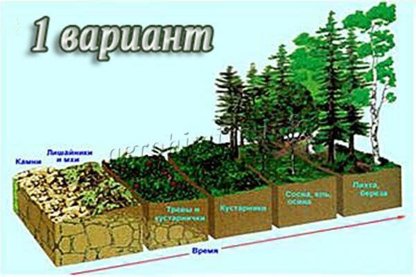 Меры бороться с эрозией почвы 1 вариант
