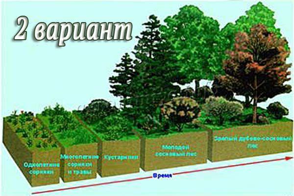Меры бороться с эрозией почвы 2 вариант