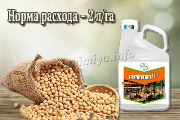 Обработка посевов сои проводится в фазе R7-R7