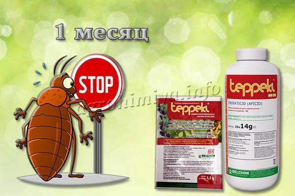 Teppeki защищает растения примерно месяц, затем требуется повторная обработка