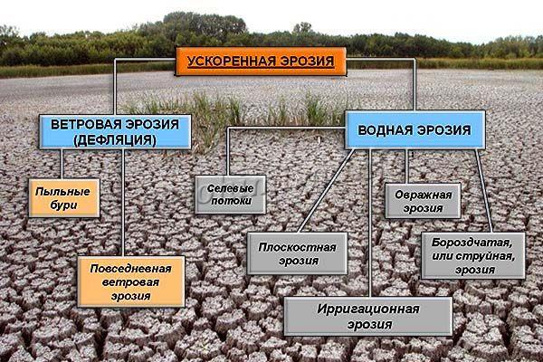 Ускоренная эрозия почвы протекает быстрее почвообразования