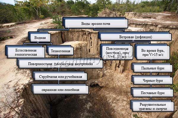 Виды эрозии почвы