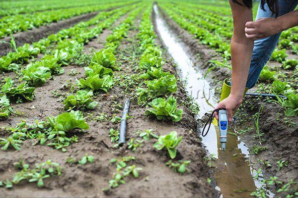 Вода – одна из причин изменения кислотности земли