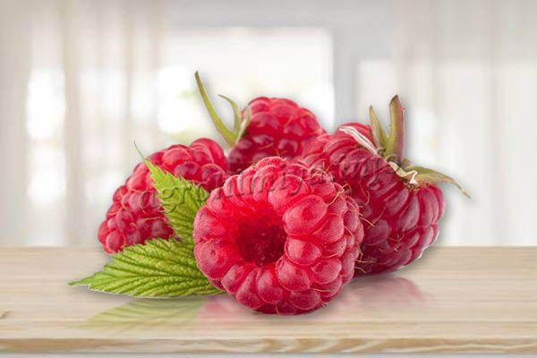 Ягоды большие (12-15 г), цвет ярко-красный, мякоть сочная, семена почти не ощущаются, аромат как у лесной малины