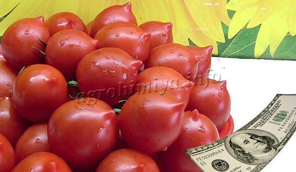 Можно выращивать Юбилейный Тарасенко для продажи, лежат они в течении 1-1,5 месяцев