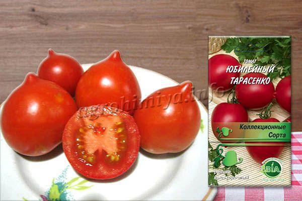 Отличительная особенность – округлый плод с ярко-выраженным носиком, внутри 6-8 камер