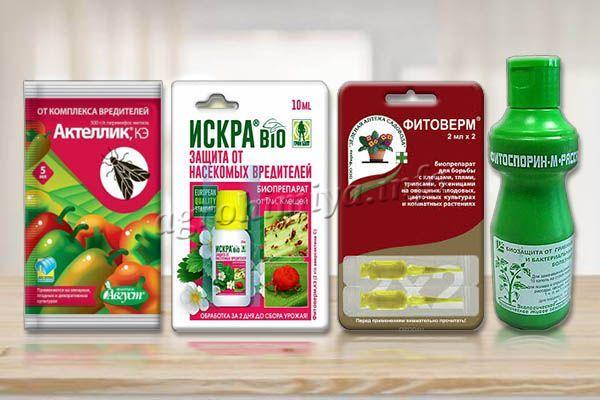 Препараты от вредителей и болезней на помидорах Батяня