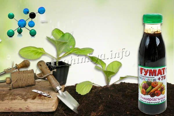 При обработке растений или земли рекомендуется строго придерживаться дозировки