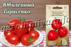 Сорт томатов Юбилейный Тарасенко