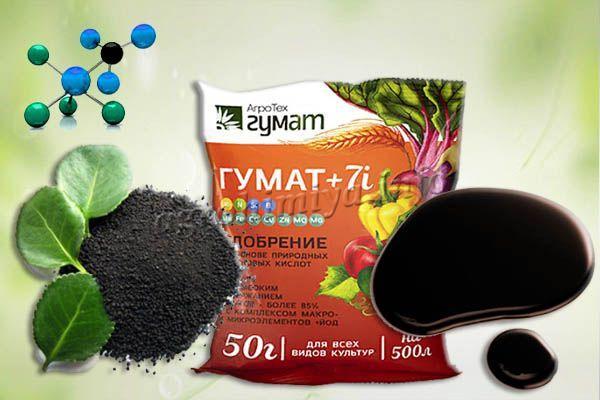 Удобрение Гумат +7 выпускается в сухом и жидком виде
