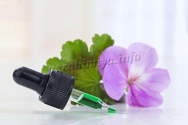 Витаминные подкормки делаются обычно и июне