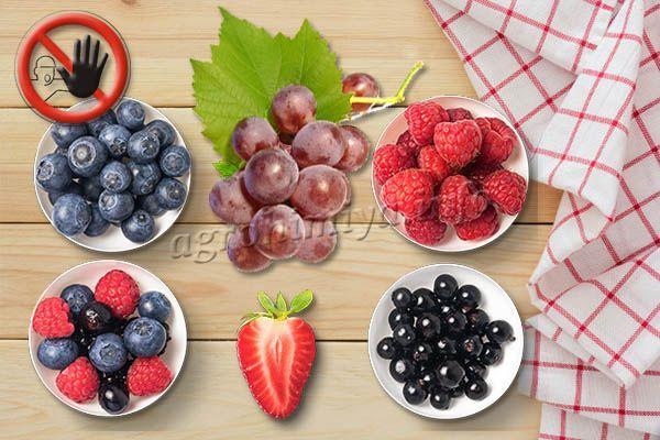Для ягодных кустарников, включая виноград и клубнику, гербицид Пантера обычно не используется