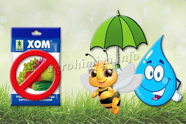 Хом легко смывается дождем и опасен для насекомых опылителей