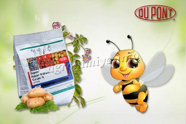 Пчелам Курзат не наносит вреда, поэтому его разрешается использовать даже вокруг пасек!