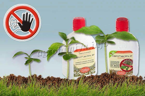 Спрут Экстра нельзя использовать во время вегетации культурных растений