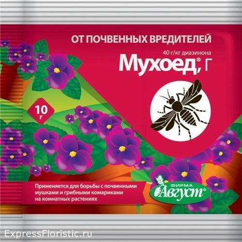 Хорошо воздействуют препараты наподобие «Гом-2» или же «Мухоед»