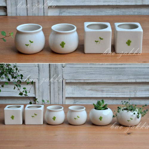 Посуда для кактуса
