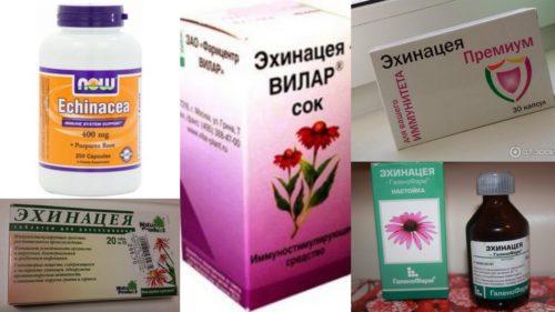 Препараты из эхинацеи