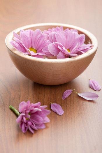 Хризантемы: в букете, горшке, салате