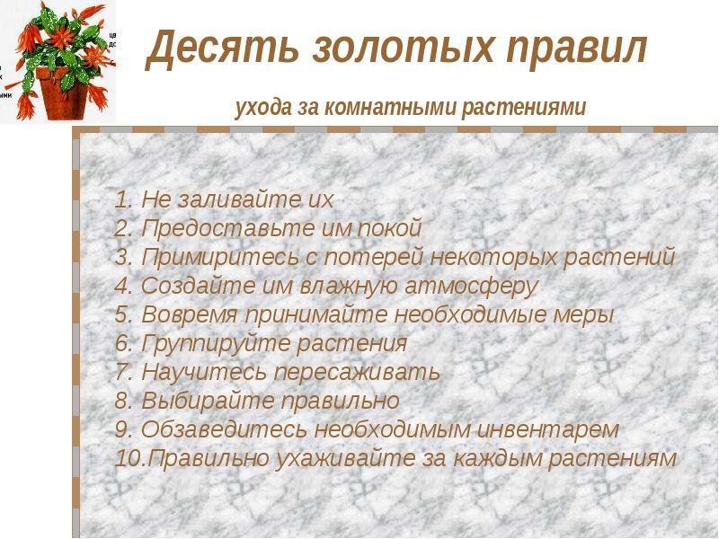 правила ухода за цветами